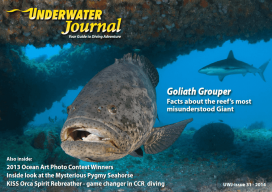 Underwater Journal N°31